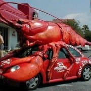 Crawfish-car